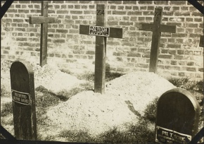 Remembrance and Peace: German War Graves Commission