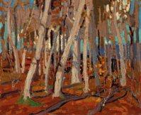 Maple Woods, Bare Trunks