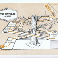 South Bank Natural Scene Map