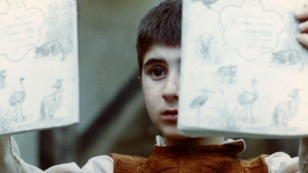 Abbas Kiarostami, Iranian Cinema